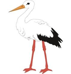 The stork vector