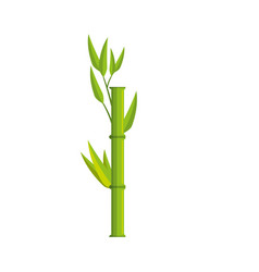 bamboo leaves icon vector image vector image