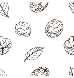 nut seamless on white background hand drawn vector image