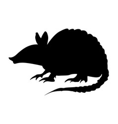 Pangolin vector