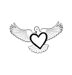 love heart brought by flying bird dove valentine vector image vector image
