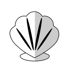 Shell icon image vector