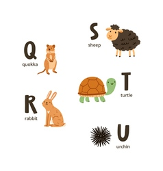 Animal alphabet letters q to u vector