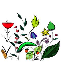 background of vegetation hand-drawn flower vector image vector image