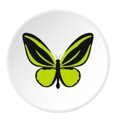 Green butterfly icon flat style vector