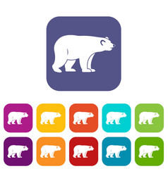 Wild bear icons set flat vector