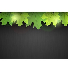 background autumn dark leaf green vector image vector image