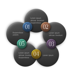 Buttons options infographics design vector image vector image