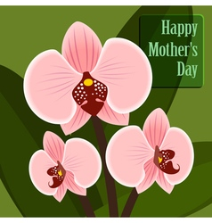 Happy Motherss Day Card with orchid vector image vector image
