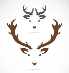 Image of an deer head vector