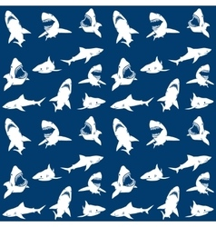 Sharks silhouettes seamless pattern white on blue vector