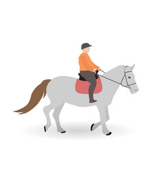 Rider on gray horse vector