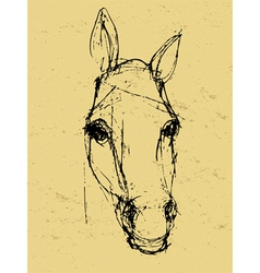 horse sketch on paper vector image