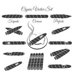 Hand drawn cigars vector