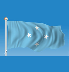 Flag of micronesia vector