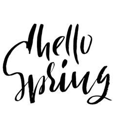 Hand lettered style spring design on a white vector image vector image