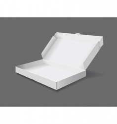 packaging box vector image