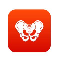 Pelvis icon digital red vector