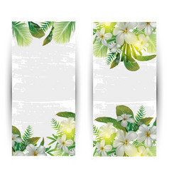 Tropical plant banner vector