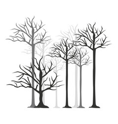 monochrome silhouette with trees without leafs vector image
