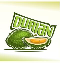 Durian fruit vector