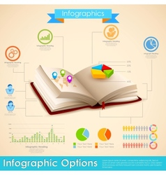 Education infographic vector
