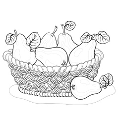Basket with pears contours vector