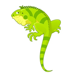 Cartoon iguana vector