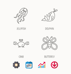 Jellyfish crab and dolphin icons vector