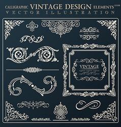 Calligraphic design elements vintage ornament vector