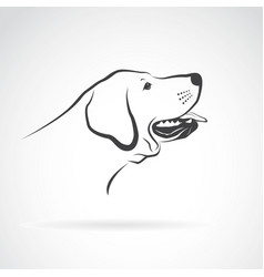 Labrador dog head on a white background pet vector