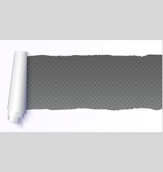 Realistic white torn open paper with space for vector