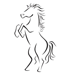 Wild stallion vector image