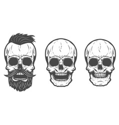 Bearded skull isolated on white background vector