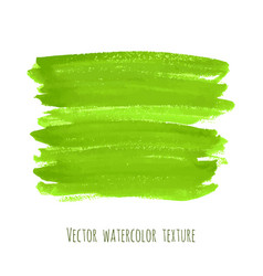 greenery hand paint watercolor texture vector image