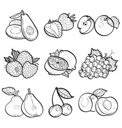 set collection doodle of fruit vector image