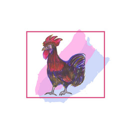 Rooster red crest drawing vector
