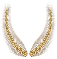 Gold wheat laurel vector image