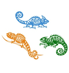 Green blue and orange chameleons vector image