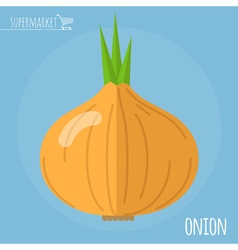 Onion icon vector image
