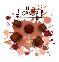 Candy chocolate lolly dessert colorful icon choose vector
