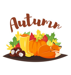 cartoon style autumn background with fox pumpkin vector image vector image