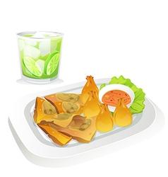 fried dumpling vector image vector image
