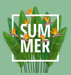 summer typographical background with tropical vector image vector image