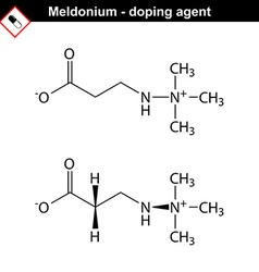 Structure of meldonium drug vector