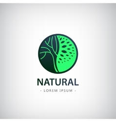 Circle eco logo tree vector