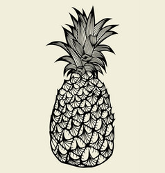 Pineapple fruit hand drawn vector