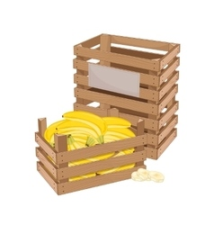 Wooden box full of banana isolated vector image