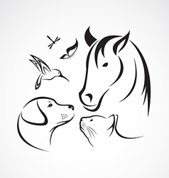 Pets horse dog cat bird butterfly dragonfly vector