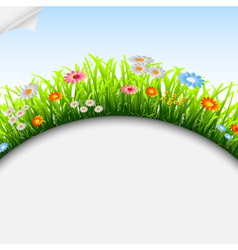 Seasonal background vector